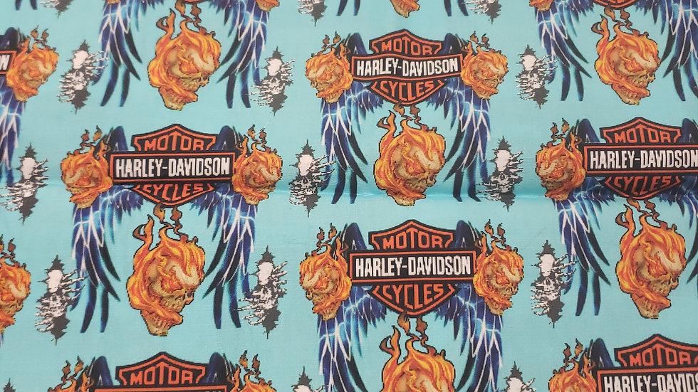 Harley Davidson Aqua Flames