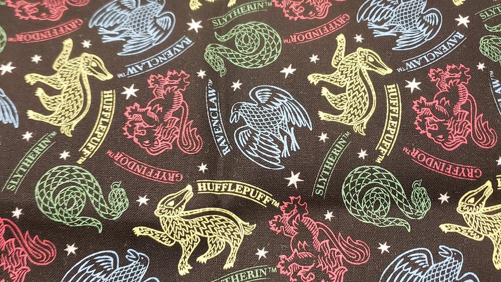Harry Potter Schools