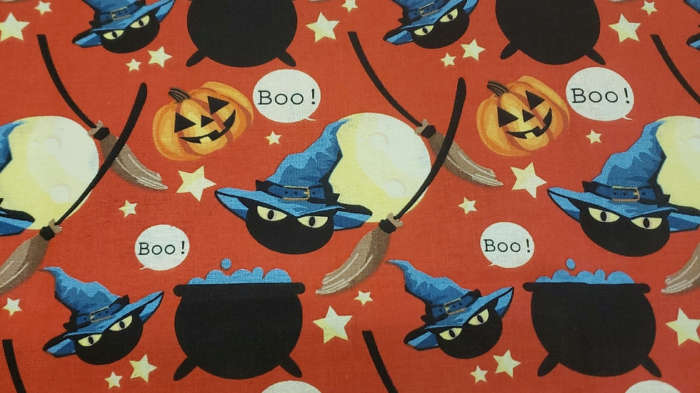 Boo! Cats and cauldrons