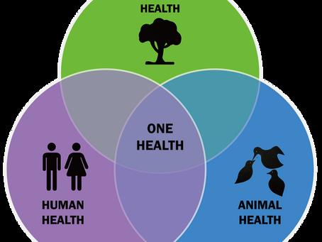 One health – Entenda o conceito de Saúde Única.