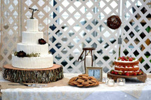 Callie and Michael's Rustic wedding cake and dessert table.