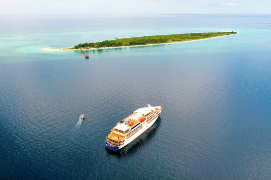 Coral Adventurer & Xplorer (1).jpg