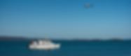ECO ABROLHOS 6.png