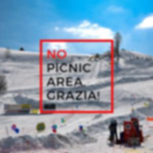 No Picnic Area Banked Slalom 2019 .png