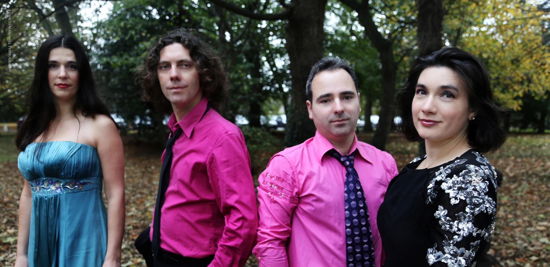 rte-contempo-string-quartet.jpg