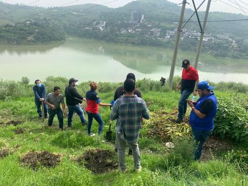 Reforestación D4170