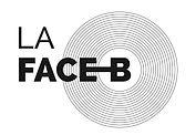 la-face-b-mjc-du-brianconnais_1810.jpg