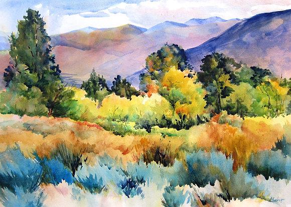 Owens Valley Color