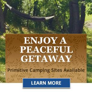 Camping 305x305 promo block.jpg