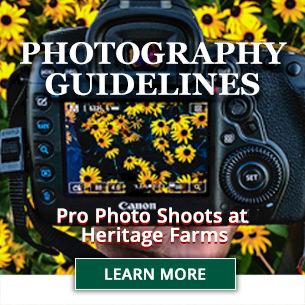 Photography 305x305 promo block.jpg