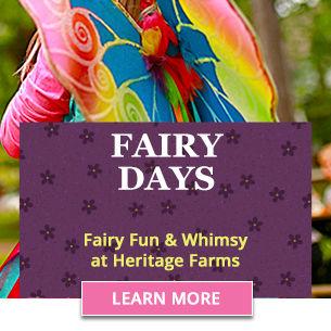 Fairy Days 305x305 promo block.jpg