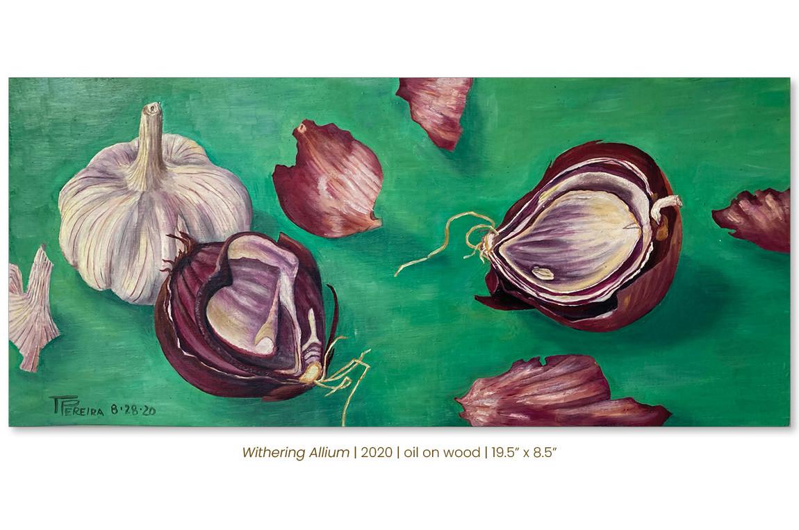 Withering Allium