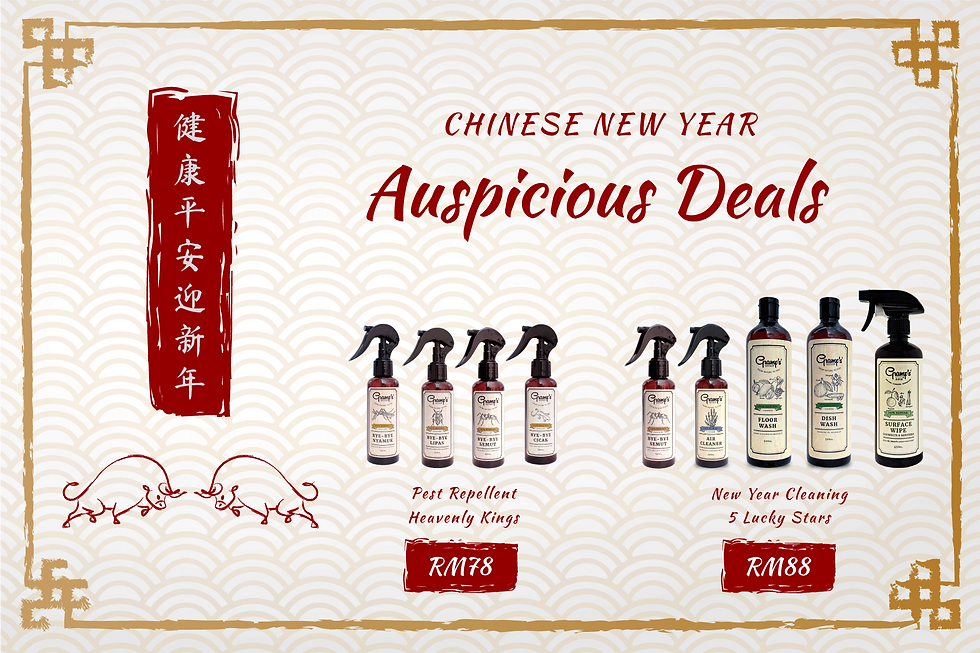 CNY-2021-Wix-Banner.png