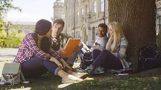 College students having discussion under tree on campus, preparing for exams.jpg