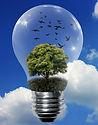 ampoule%20environnement_edited.jpg
