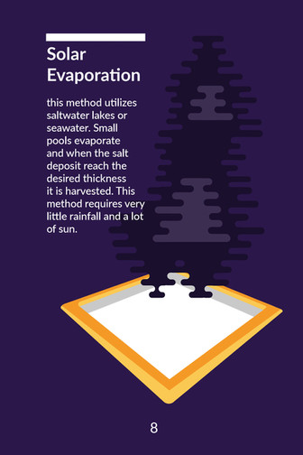 Salt Book_Page_09.jpg