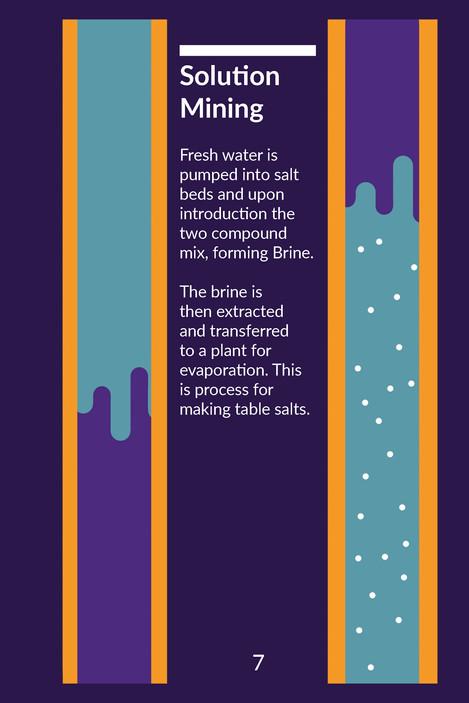 Salt Book_Page_08.jpg