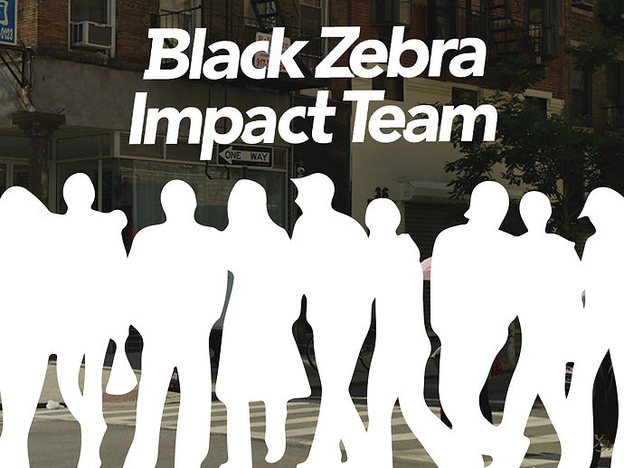 BZ Impact Team Web Graphic 001-01.jpg