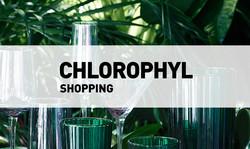 Chlorophyl // Shopping