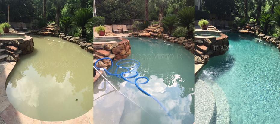 pool_whisperer_img_tx.jpg