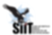 SIIT Logo.png