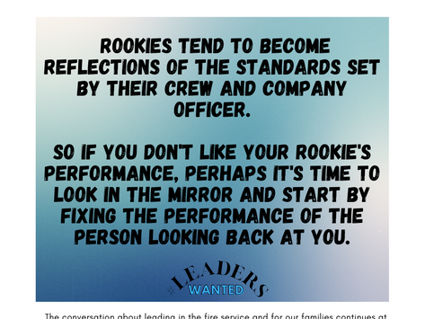 How to Fix a Stupid Rookie: Rethinking our expectations of company officers