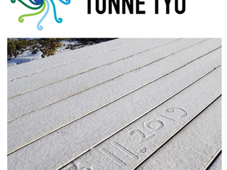 Tunne Työ -hankkeen uutiskirje 2/2019
