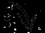 0-6938_png-clipart-arrow-png.png