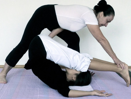 FLOW-NUAD Ausbildung mit Veni: BASIS MODUL (Indoor Termine in Planung)