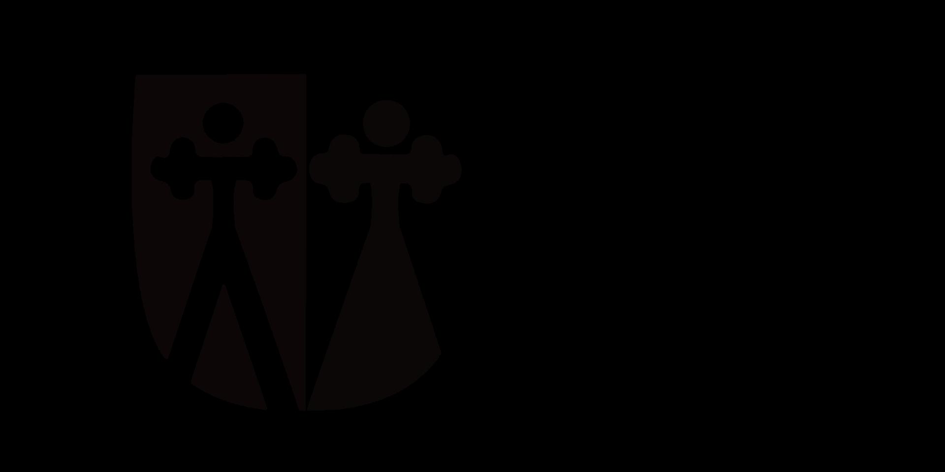 lapinjärvi  logo syvä.png