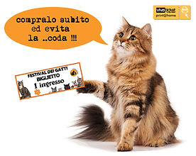 ticket gatti.jpg