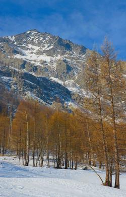 barcenisio lungo sentiero piedi montagna