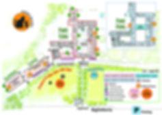 mappa gatti 2019.jpg