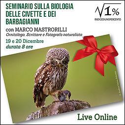 Seminario sulla biologia della civetta e del barbagianni