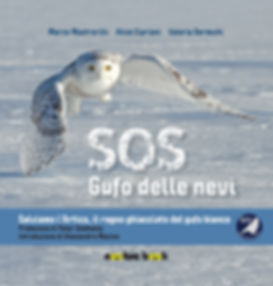SOS Gufo delle nevi.jpg