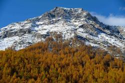 montagna sentiero gufi