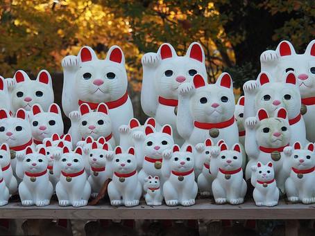 Maneki Neko: il gatto portafortuna!