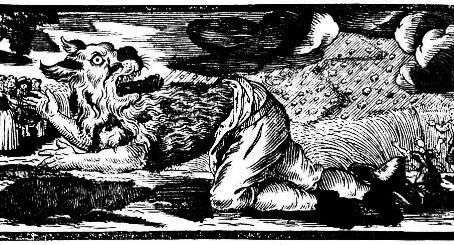 Lupi, magia e licantropi 4p
