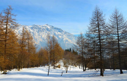 barcenisio luce sole neve