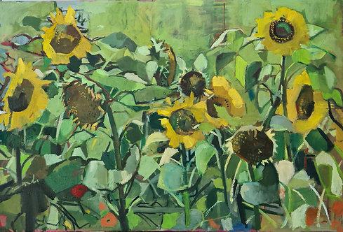 Sunflowers. Oil on linen canvas, 60x90cm. Framed.
