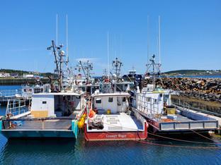 Day 3: Western Nova Scotia