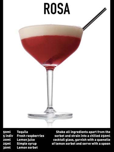 SS website Cocktail spec - ROSA .png