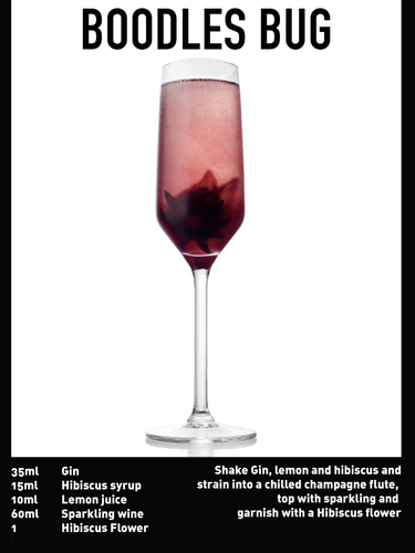SS website Cocktail spec - boodles bug .