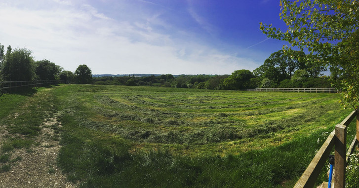 Hawbridge Farm | Rye Grass Meadow