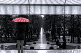 Watching the rain fall