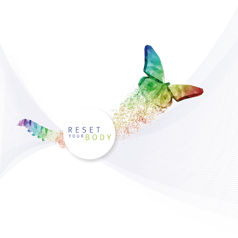 Metabolic Balance Butterfly Logo - Zest