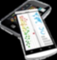 Twingo Microstrategy Mobile BI