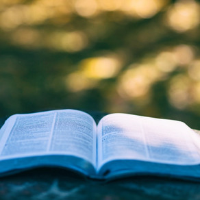 Discovery Bible Study: Creation to Christ Scripture List