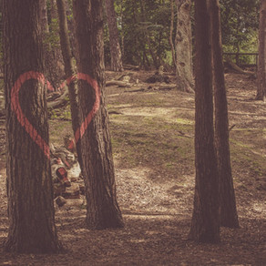 God's Word Captures Unbelievers' Hearts