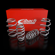 50mm Raceline Eibach Pro Kit Springs | Silver